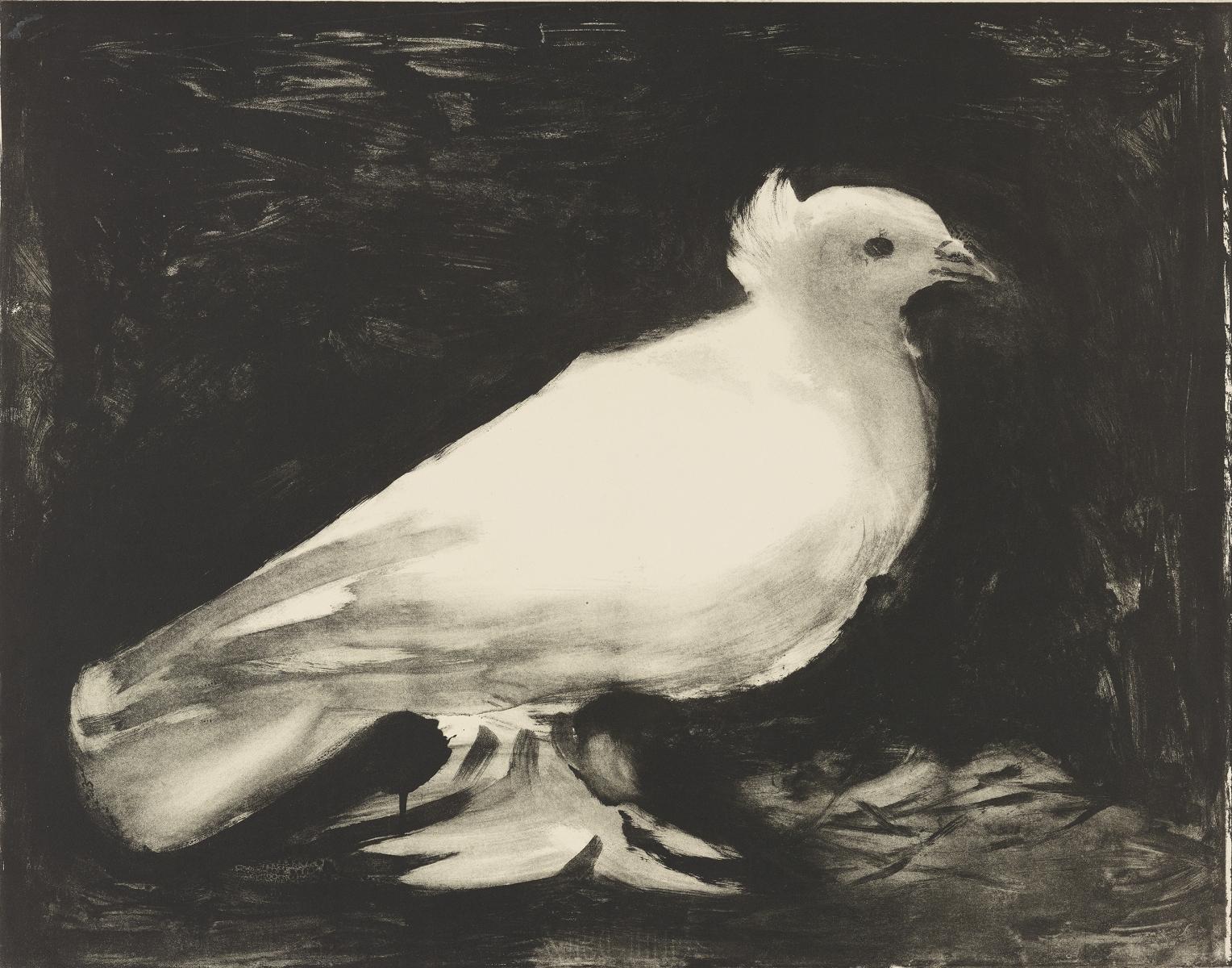 Picasso_The_Dove
